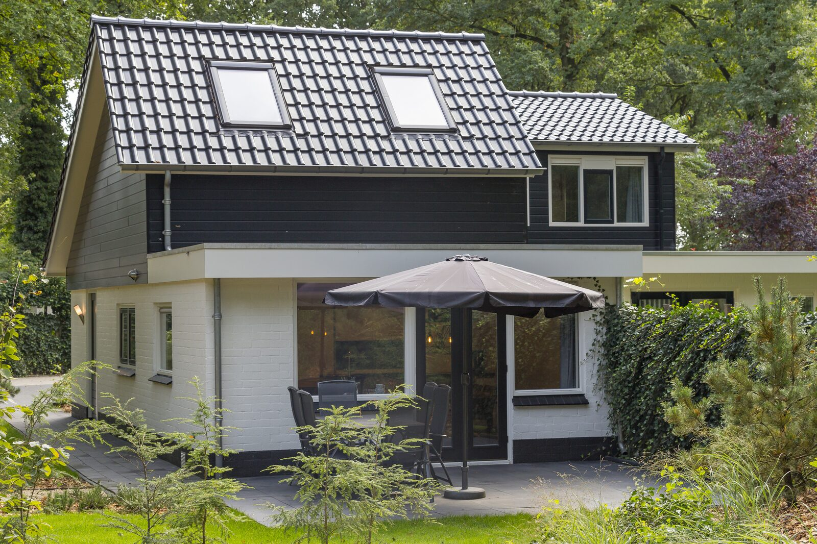 Bos Bungalow  6 personen ( Wellness )