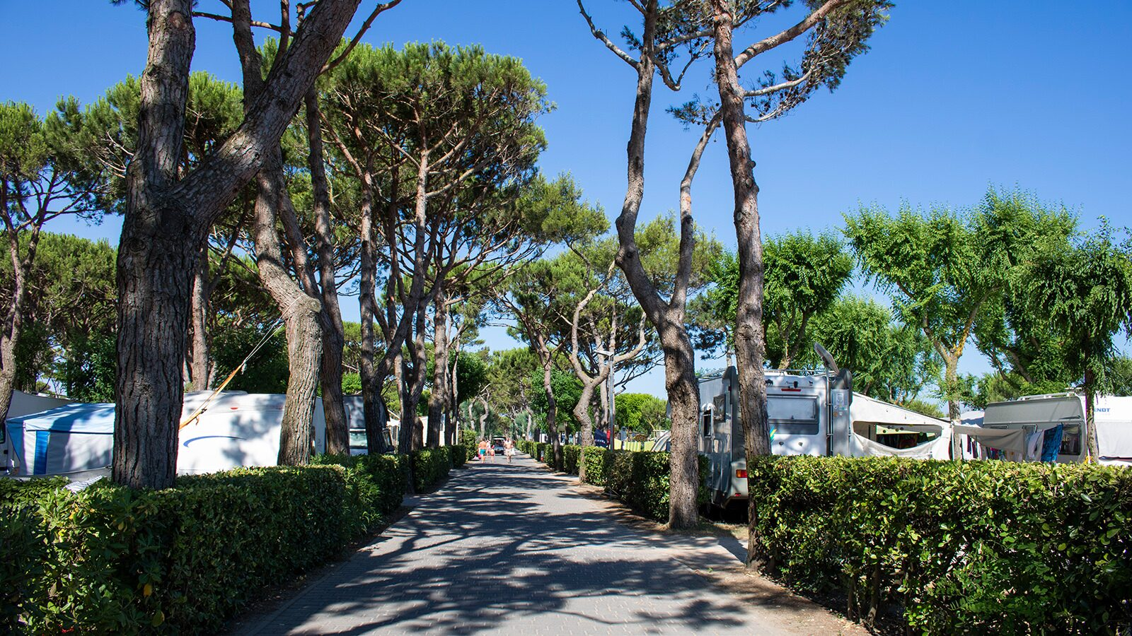 Camping Village Cavallino | Luxe Sanitair XL 6 Pers.