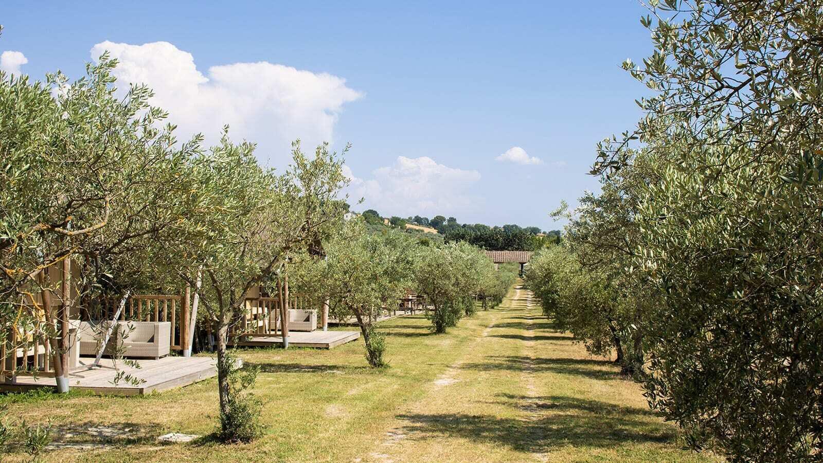 Pian di Boccio | Villatent XL met sanitair | 4 tot 6 pers.