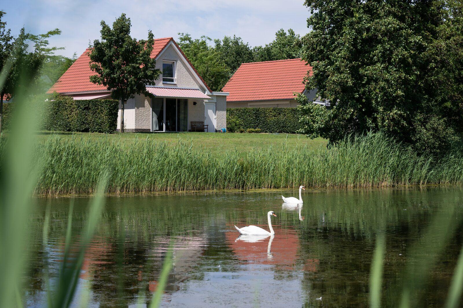 Ferienhaus am Heidesee