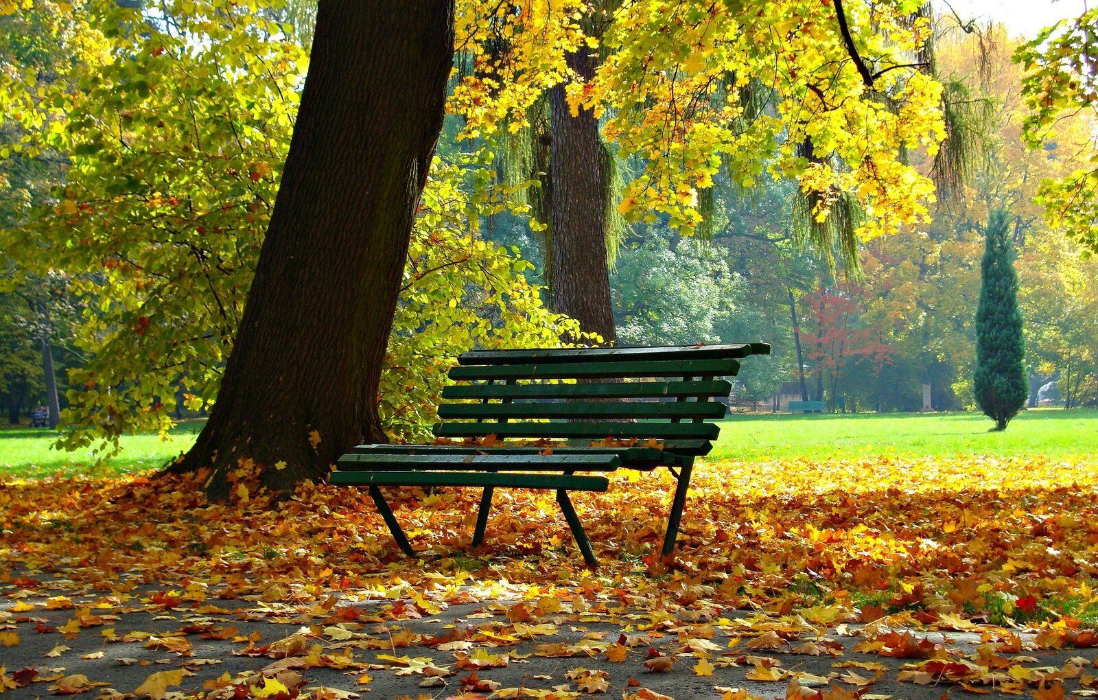 Herbstferien (1 Woche)