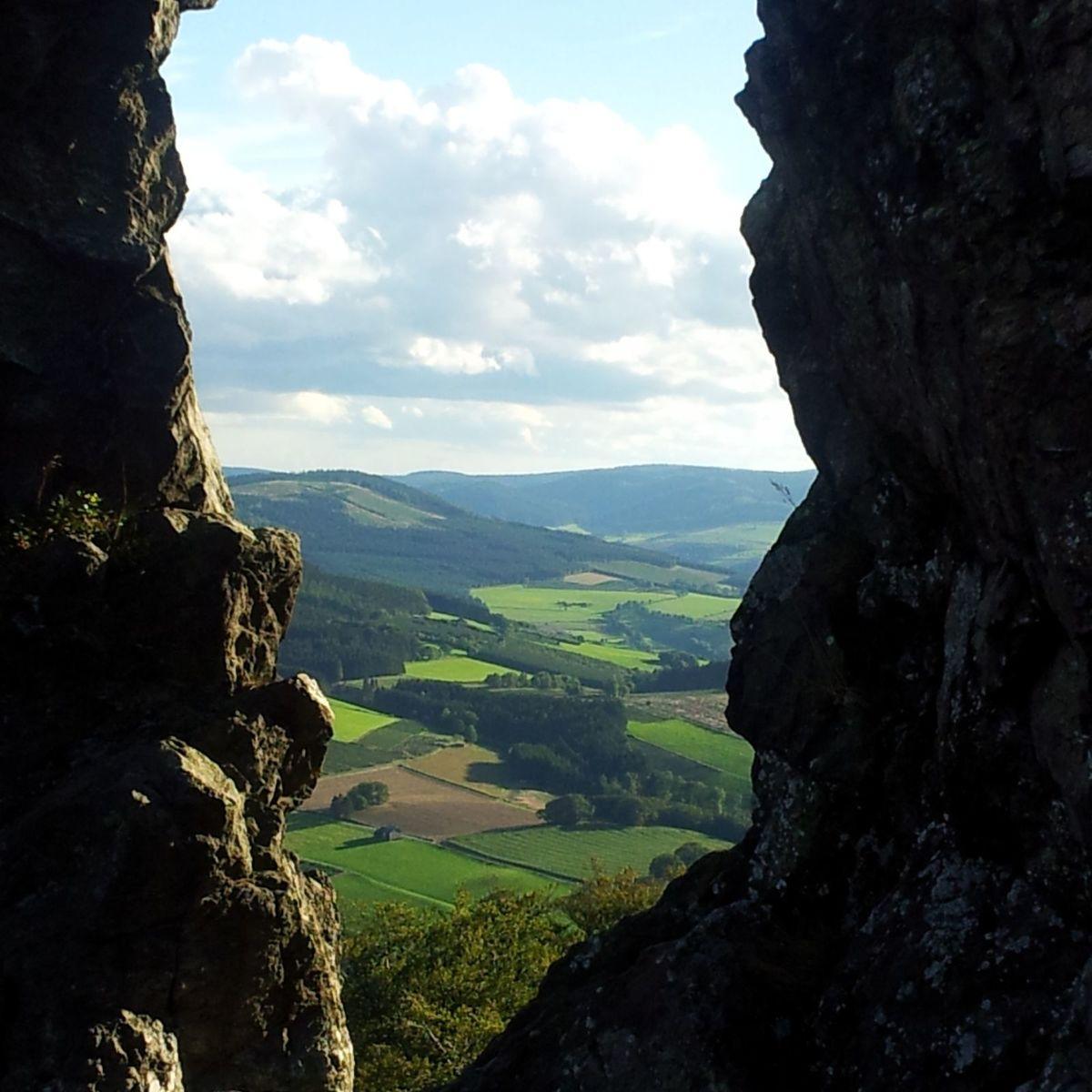 Studie - Kiefernweg 14-15