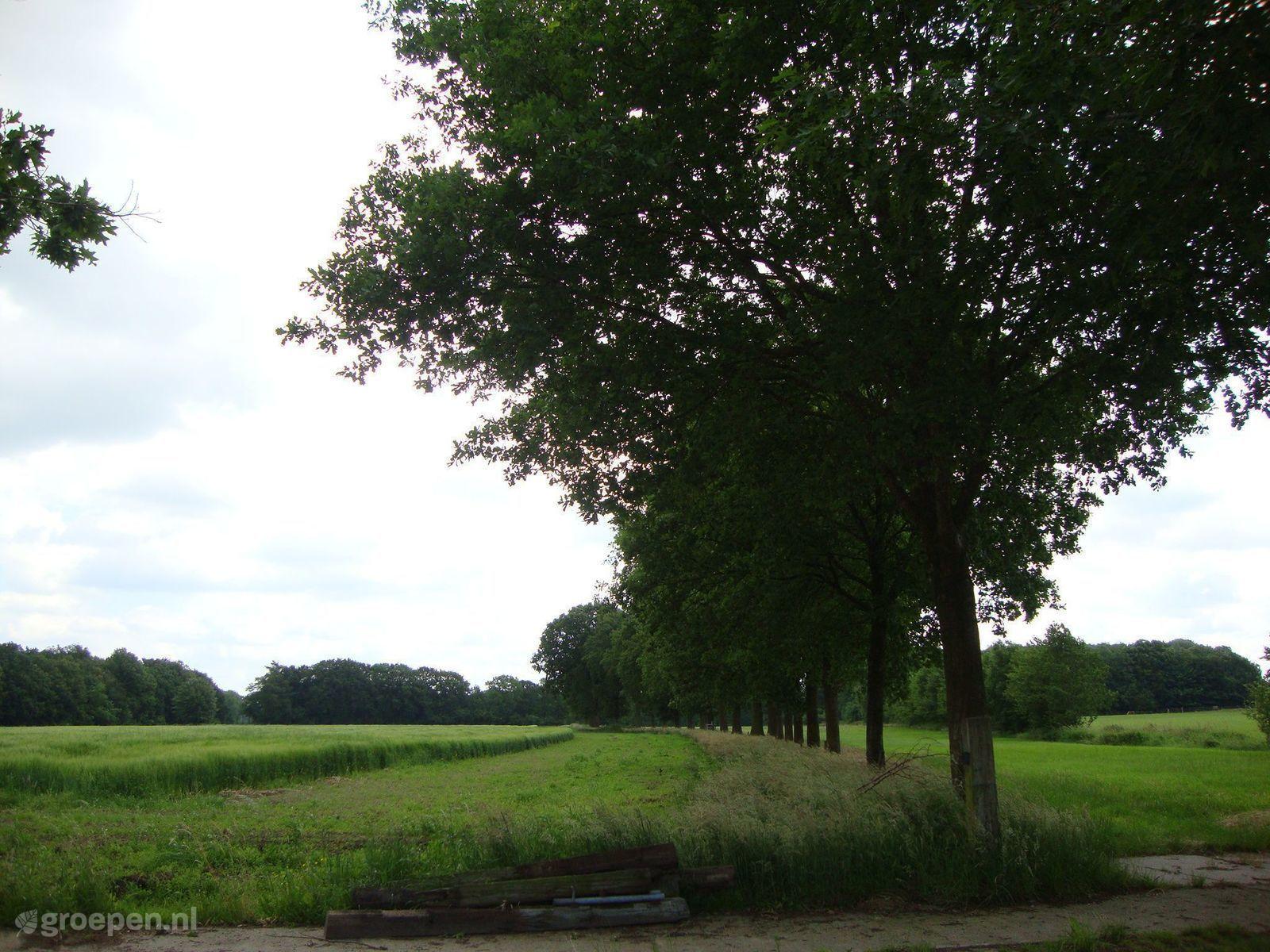 Vakantieboerderij Achterveld