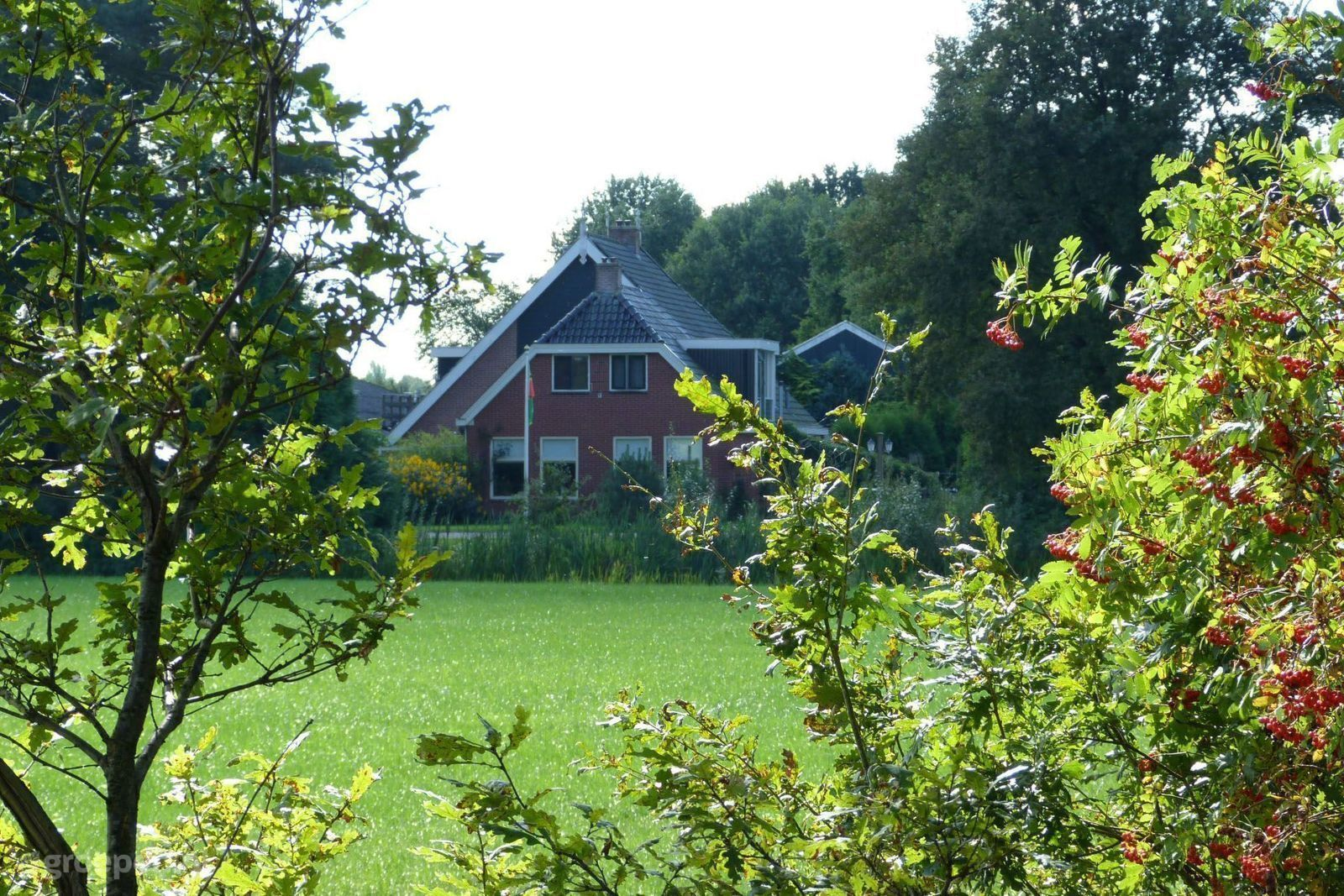 Holiday Farmhouse Bakkeveen