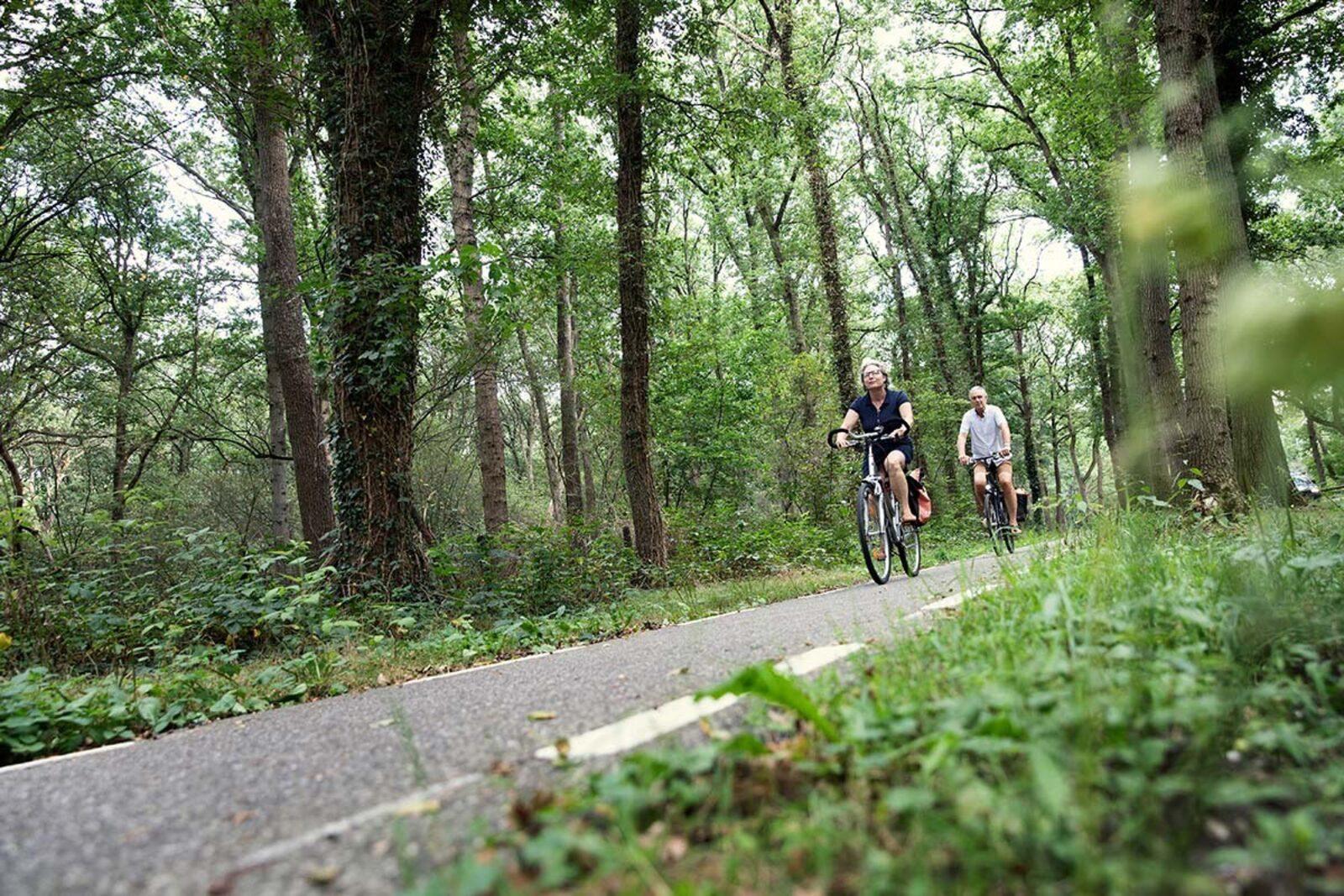 ANWB vechtdal fietsvierdaagse 2021
