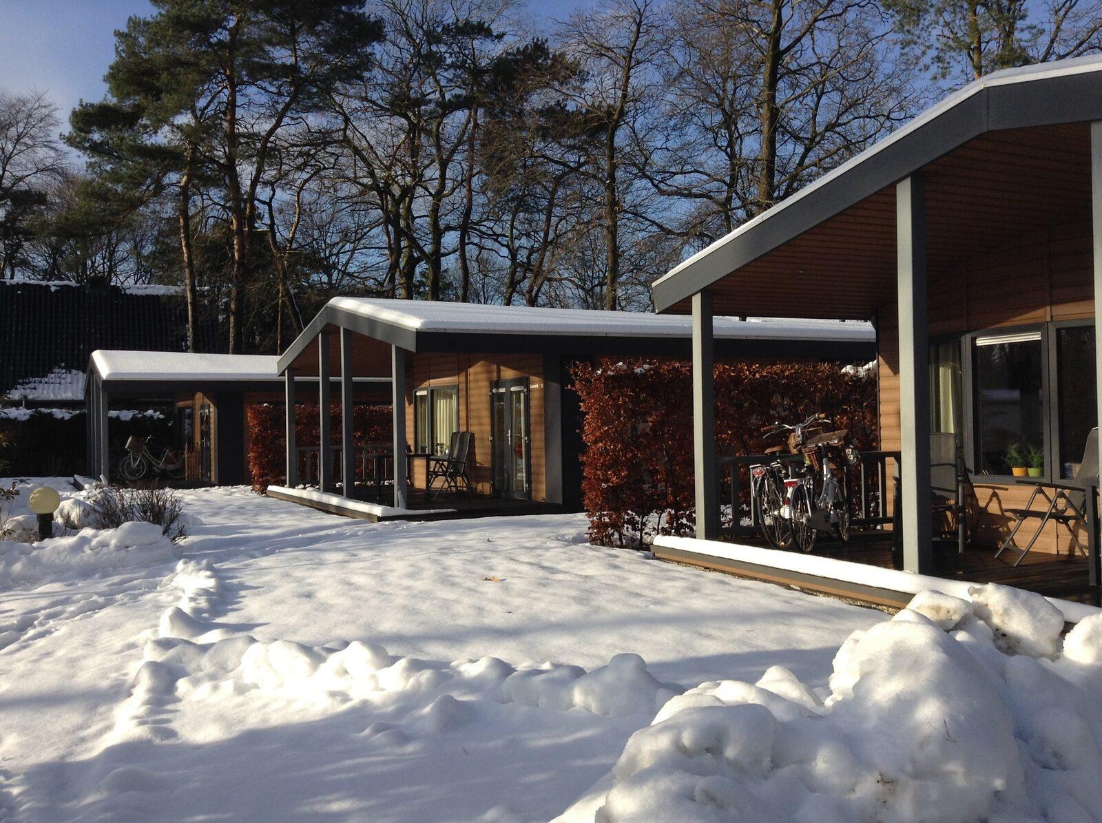 Veranda bungalowchalet | 6 pers.