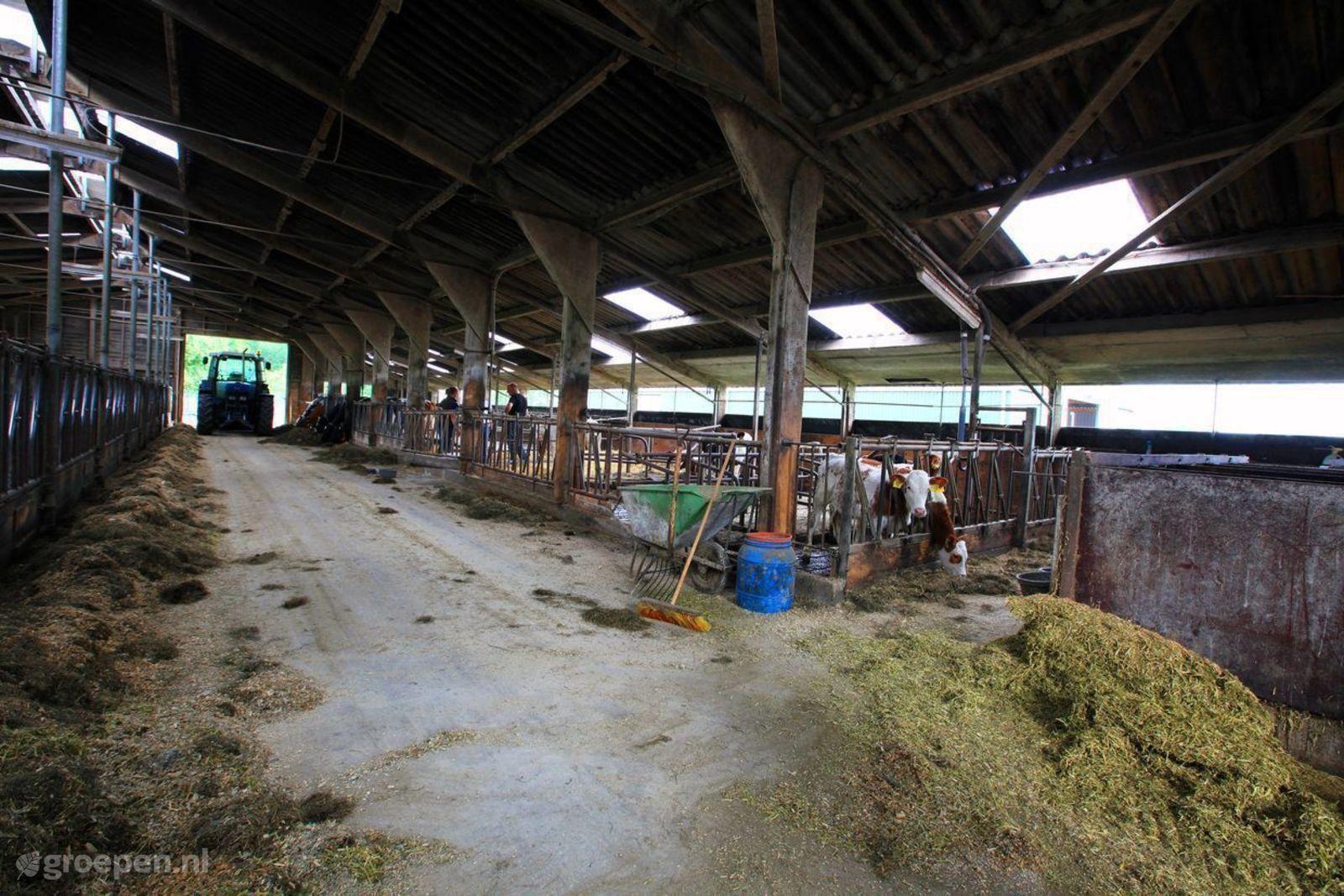 Vakantieboerderij Eibergen