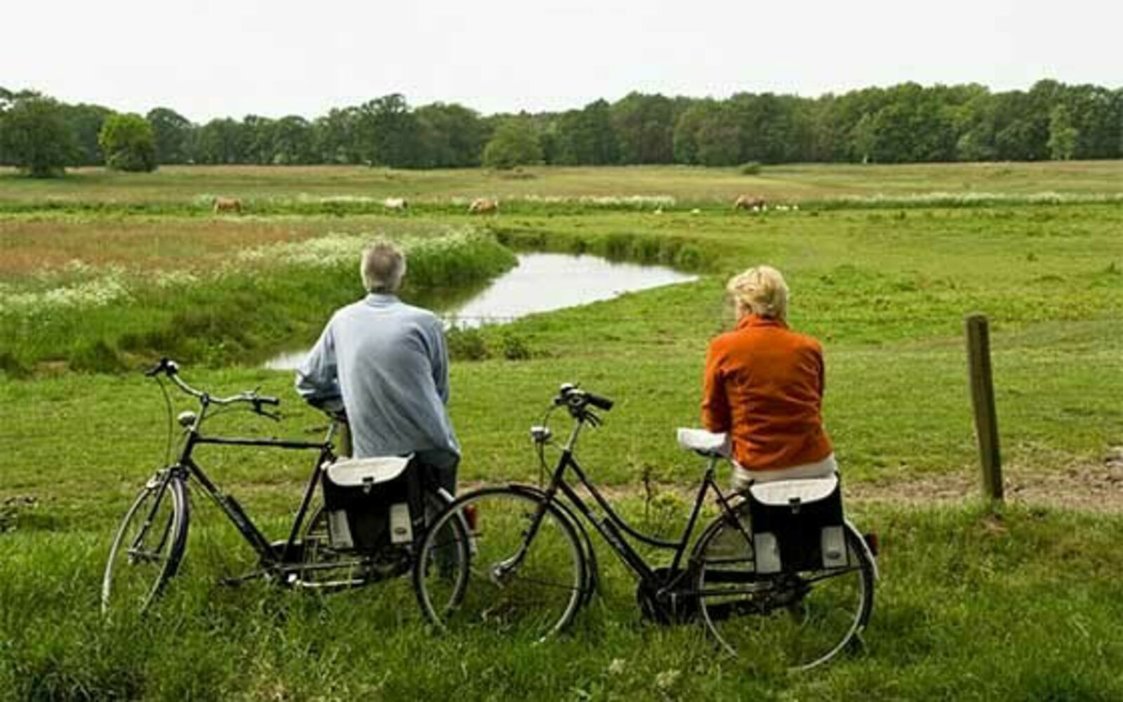 Vechtdal fietsvierdaagse
