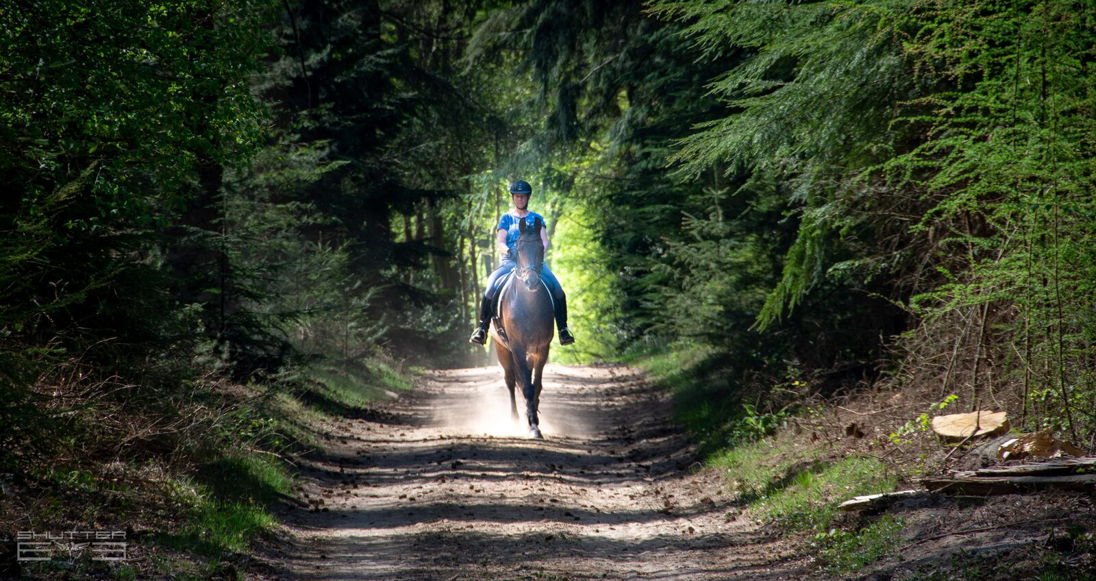Weekend, samen met je paard