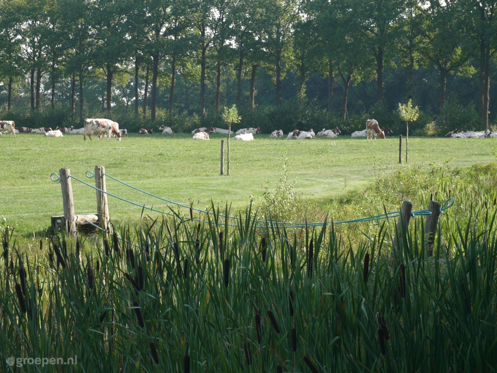 Vakantieboerderij Holten