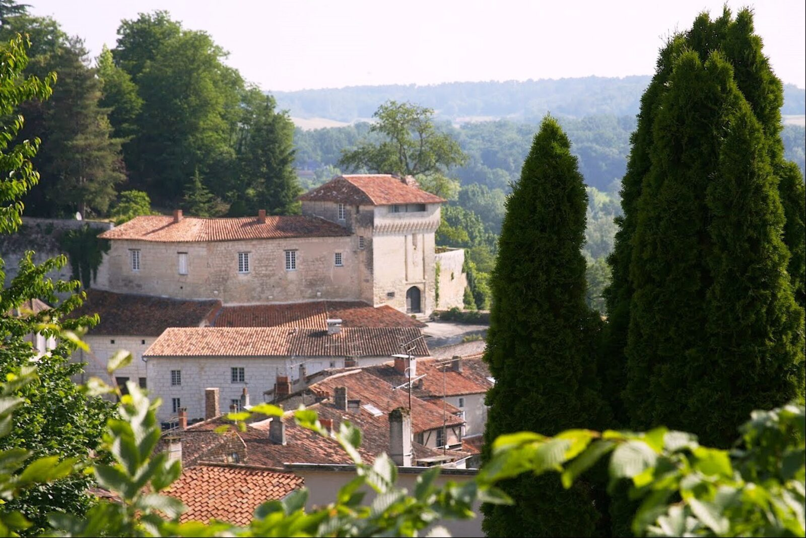 Domaine de Longeveau - Cerisier