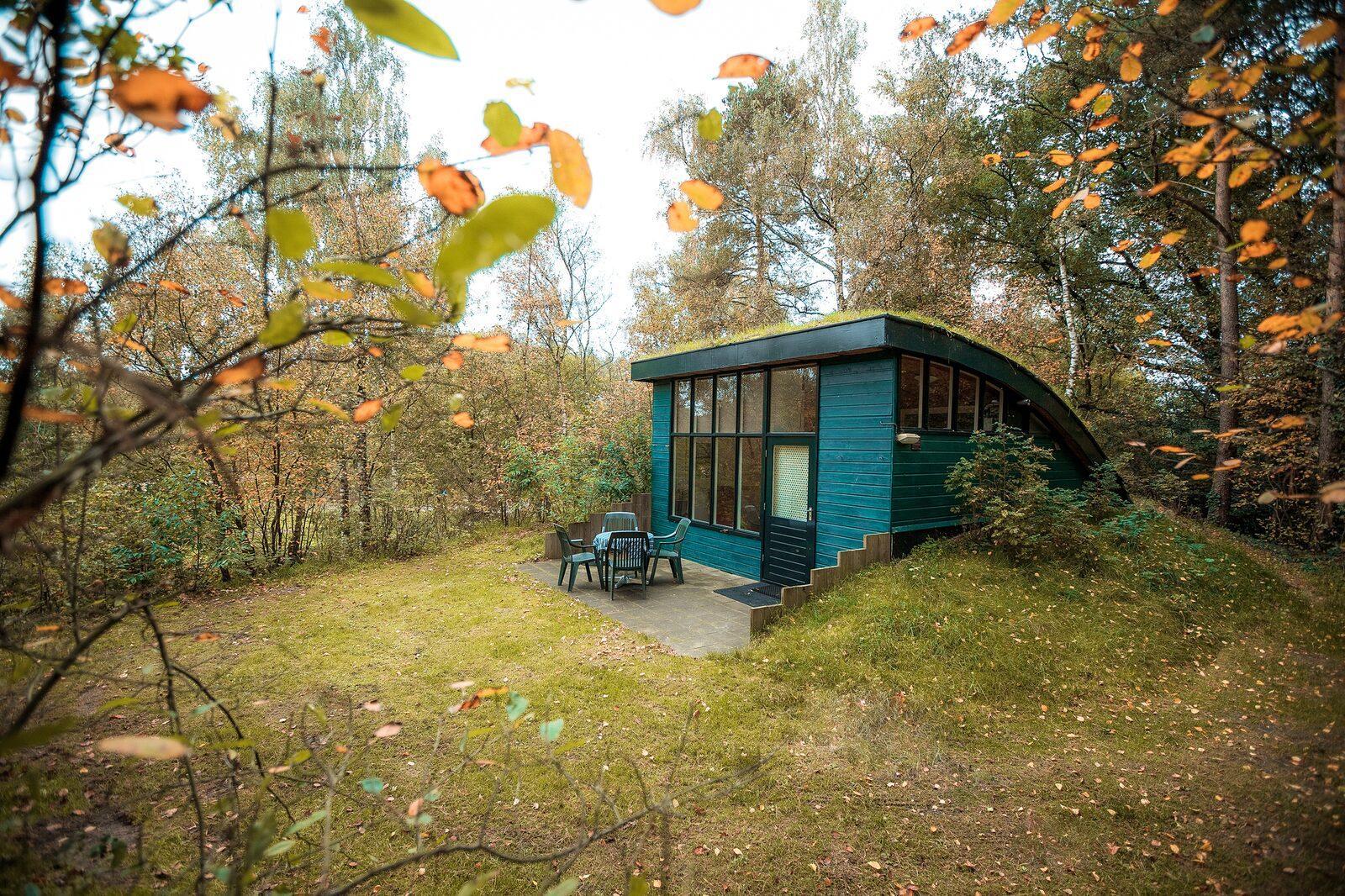 Vakantiepark Beerze Bulten - Heuvelchalet