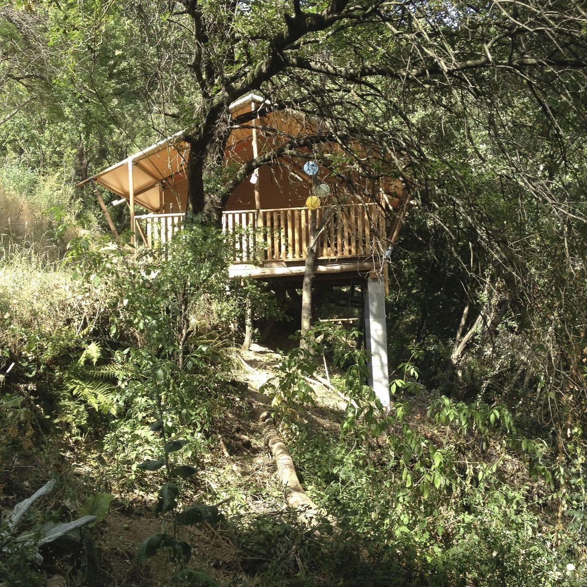 Cevenolse Mas Safaritent - kampeervakantie in Franse natuur