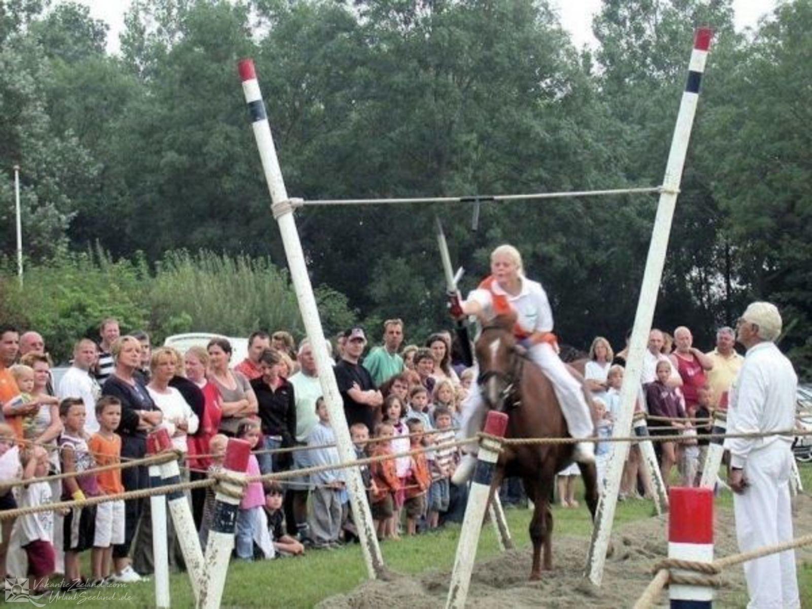 VZ354  Chalet Serooskerke